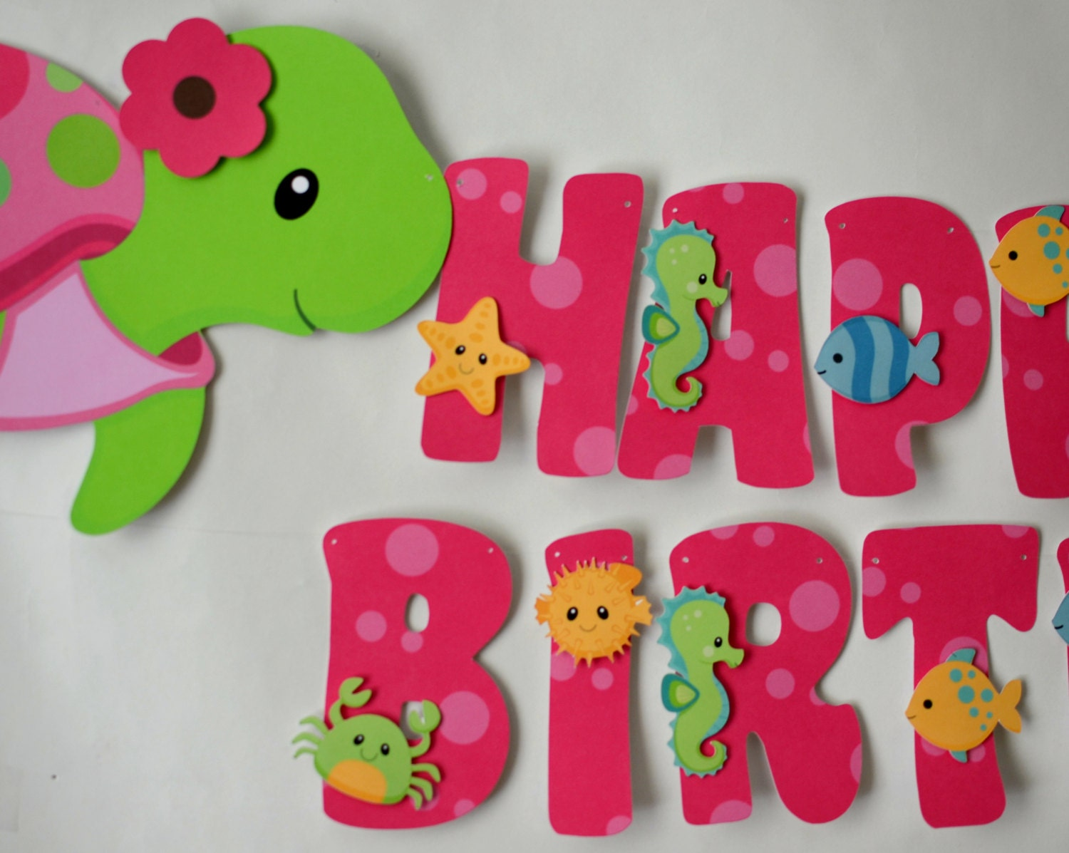 Pink Girl TURTLE First Birthday Party or Baby Shower