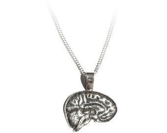 SMART - Anatomical Brain Necklace in cast sterling silver by medical artist Beth Croce