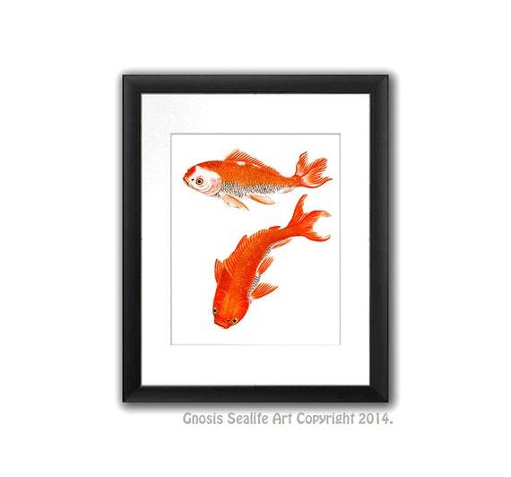 Minimalist Art Decor Koi Fish Wall Art Print 1 Koi Is Symbol