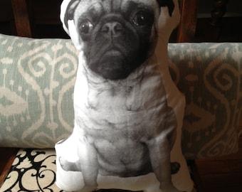 Ollie the Beige Pug Pillow - Forward Facing