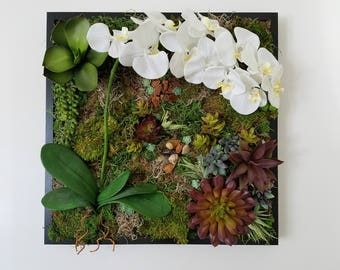 The Purity - Faux Succulent, Lotus and Moss Framed Botanical Art