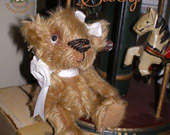 Bear SUSY