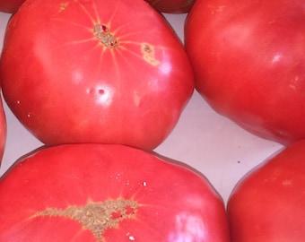 Greek Cretan Traditional Tomato Variety Vegetable 15+ Seeds - Lycopersicum esculentum