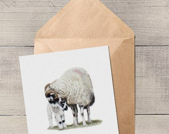 Swaledale Sheep and Lamb Blank Animal Artist Card