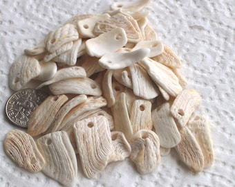 60 Natural Sea Shell Fragments Charms Top Drilled 2mm holes Supplies (1520)