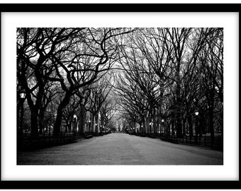 Central Park, NYC  -  Black and White Fine Art Photograph printed on 308gsm Hahnemuhle fine art paper (Unmatted)