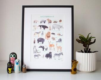 An A-Z of Wild Animals (unframed print)