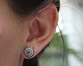 Swirl Shell Earrings