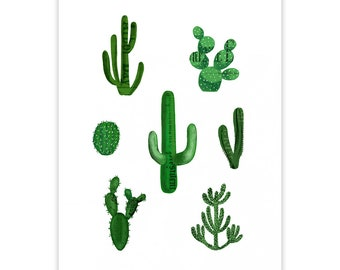 Cactus Art Print - Collage Art Print - Wall Art Home Decor