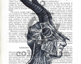 Spring is Here Ball Point Pen Anatomy Illustration on 1960's Reconstructive Plastic Surgery text book page.