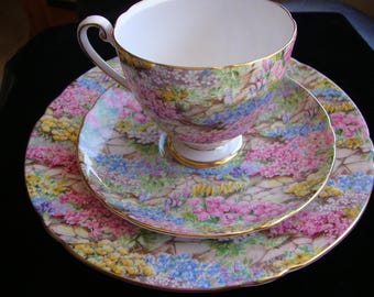 Shelley Fine Bone China Rock Garden Pattern Cup Saucer and Dessert Plate