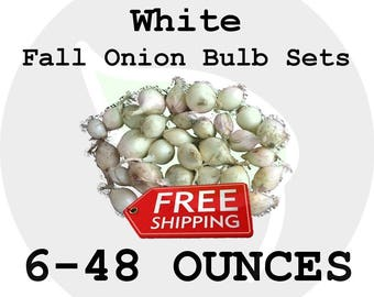 2017 Fall Winter Onion Bulb Sets (White) - Organically Grown Seed Onions, Non-GMO - FREE SHIPPING!