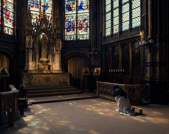 Prayer in Cathedral