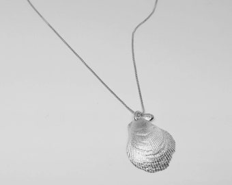 Kalihi shell necklace,shell necklace, silver shell necklace, silver seashell necklace, clam seashell