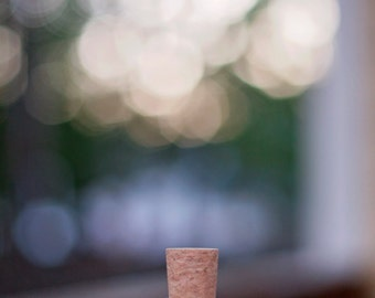 Cork & Bottle USB Flash Drive