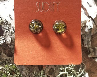 Lichen  nature terrarium stud earrings