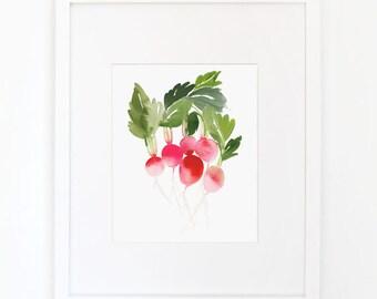Radish - Watercolor Art Print