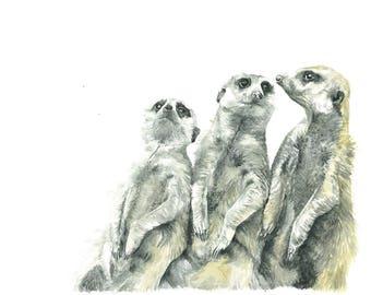 Watercolour Meercat Print, Animal Art, Safari Animals, Bedroom Art, Nursery Art, Ready to Frame