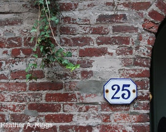 Rustic, Brick, Wall, Sign, 25, red, white, green, tree branch, blue, doorway, photograph