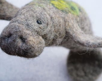 Roberta - Manatee, needle felted animal , needle felted manatee , wool sculpture, faux taxidermy