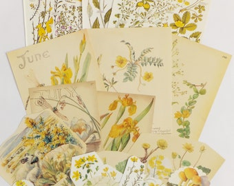 Yellow Flowers Vintage paper pack, Yellow floral themed paper ephemera pack - paper ephemera lot - craft supplies