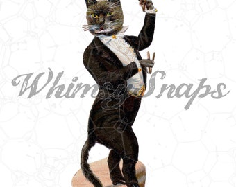 Victorian Cat in Tuxedo Illustration DIGITAL IMAGE Download,  .png and .jpeg, transfer to burlap, totes, designs, collages and more