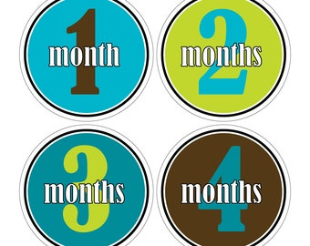 12 Monthly Baby Milestone Waterproof Glossy Stickers - Just Born - Newborn - Weekly stickers available - Design M021-06