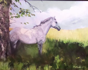 Pensive Grey - 12 x 16 inch original oil painting of a horse by Martha Dodd