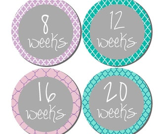 Weekly Pregnancy Stickers, Pregnancy Announcement, Pregnancy Belly Stickers, Pregnancy Photo Prop, Maternity Stickers, P37