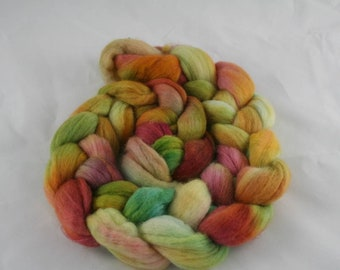 Autumn Paint Hand Dyed Combed Top Merino