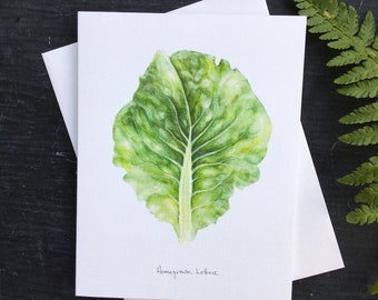 Homegrown lettuce - greeting card