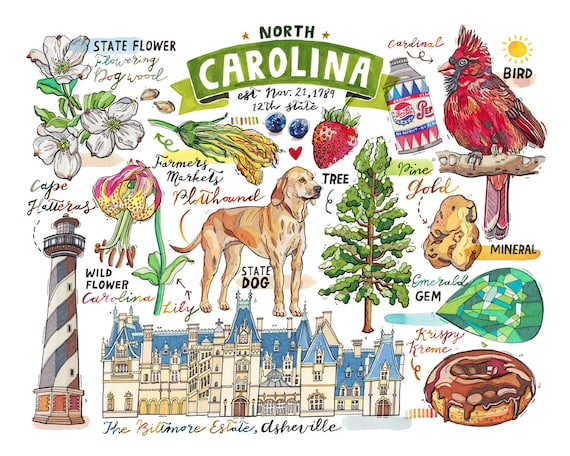 North Carolina Print State Symbols Illustration State Art