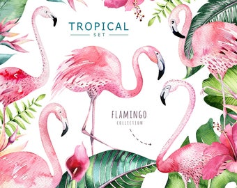 Watercolor greenery flamingo clipart. Digital tropical patterns. Tropic palm leaves, exptic flower. Aloha green floral set, rose pink summer