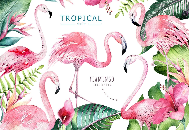 Watercolor Greenery Flamingo Clipart Digital Tropical