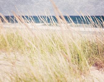 Beach Dunes, Sand Dunes, Beach Grass, Jersey Shore, Coastal Living