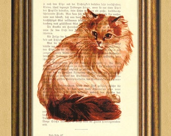 My TURKISH VAN CAT - Dictionary art print -Vintage art book page print recycled - Art Print Dictionary