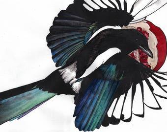Magpie - A5 Fine Art Print