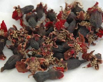 Dried pomegranate flowers, picked when newly open and sun dried.