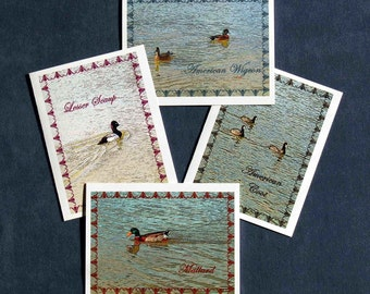 Blank Note Cards - Water Bird Series - Set of Four, Mallard Duck, American Wigeon Duck, American Coot, Lesser Scaup Duck, Nature Note Cards
