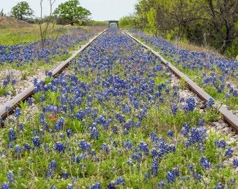 Wildflowers, Landscape photography, Texas, Hill Country, railroad,Western, flowers, bluebonnets, fine art print