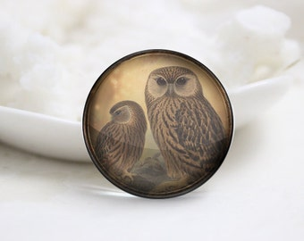 10mm 12mm 14mm 16mm 18mm 20mm 25mm 30mm Handmade Round Photo glass Cabochons Owl Image Glass Cover  (P2671)