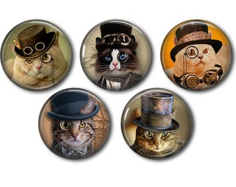 Lot 5 resin craft, round cabochons, after 20 or 25mm cat Steampunk 03