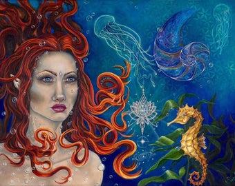 Aquatic Enchantment 24 X 14  Fine Art Paper Print