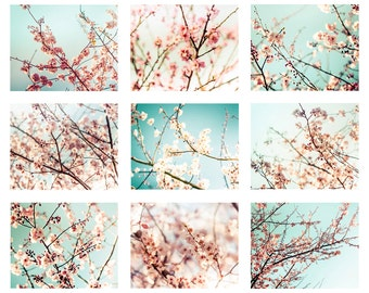 blossom photography spring set of 9 prints nature photography flower 8x10 11x14 fine art photography floral mint pink aqua large wall art