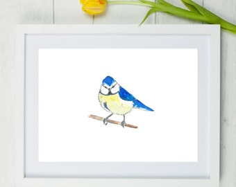 Bluetit, blue tit, blue tit painting, bluetit painting, blue tit art, bluetit art, garden birds, garden bird, blue bird, british birds