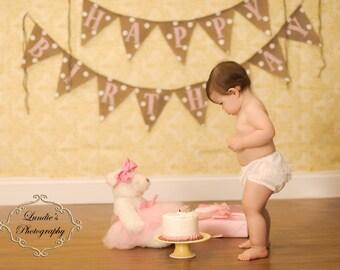 GIRL BIRTHDAY BANNER, Burlap Birthday Banner, Happy Birthday Burlap Banner, Girl Birthday Decorations, Custom Birthday Sign, 1st Birthday