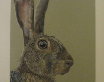 Hare 'Ellwood' Original pastel painting *SOLD*