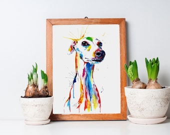 Colorful Whippet and Italian Greyhound Art Print - Print of my Original Watercolor Painting (FREE Shipping)