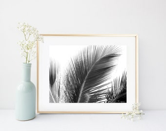 Palm Leaf Print, Black And White Photo, Palm Tree Art, Printable Art, Palm Tree Photo, Tropical Wall Art, Wall Decor, Instant Download