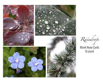 Raindrops Photo Note Cards Set of 8